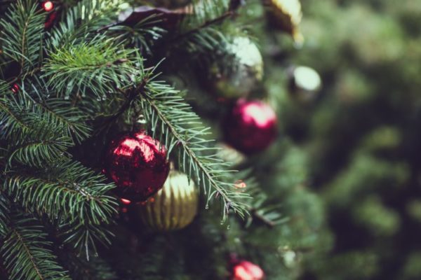 Surviving the Holidays with Grace